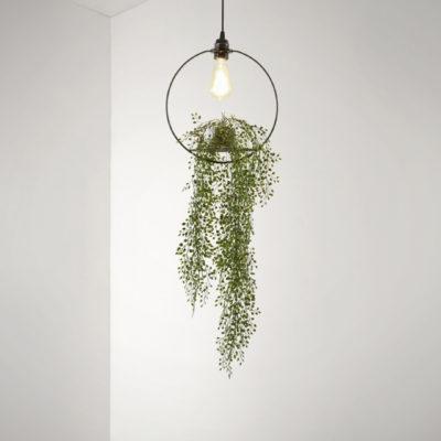 Aeon Hanging Garden Circle Pendant