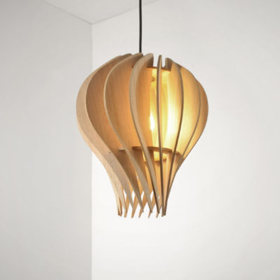 Protea Point Pendant Lights